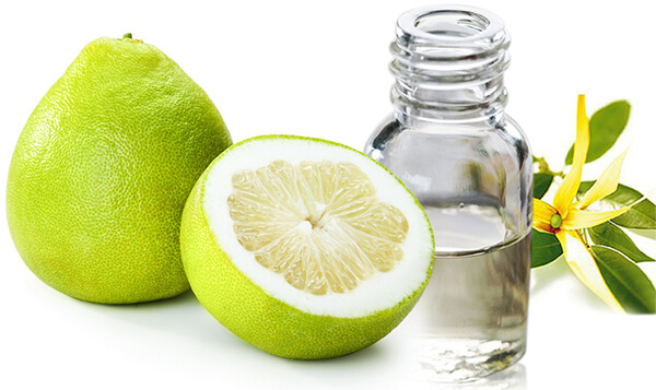 Chăm sóc tóc khỏe đẹp từ nguyên liệu thiên nhiên