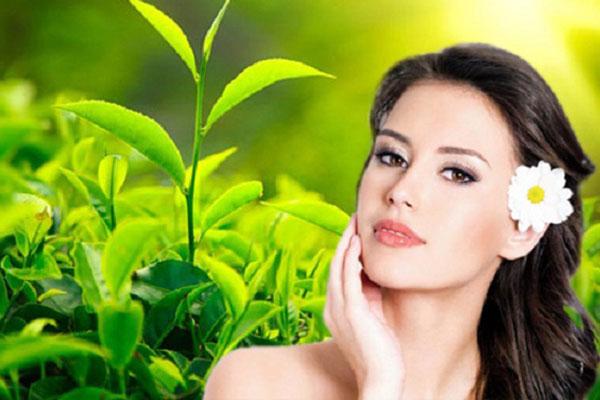 Làm đẹp da từ bột trà xanh an toàn, hiệu quả