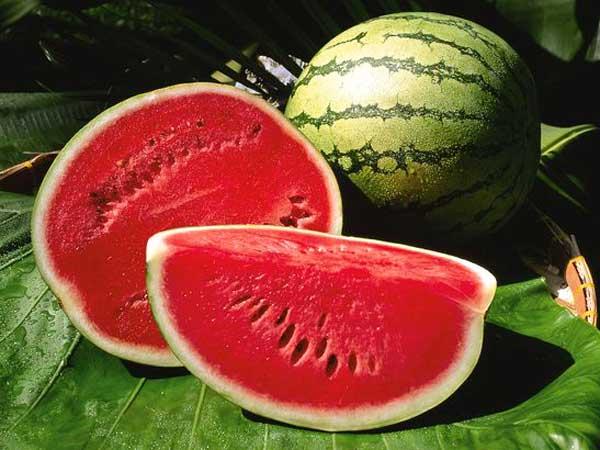 Nằm mơ thấy quả dưa hấu, ăn dưa hấu đánh đề con gì chắc ăn nhất?