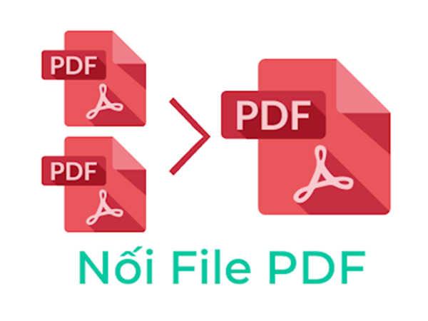 Top 3 phần mềm nối file PDF đơn giản được ưa chuộng nhất