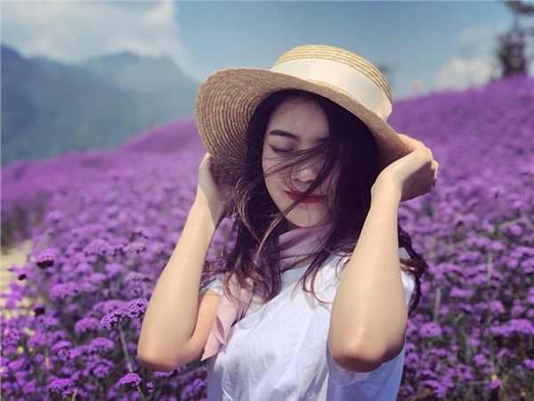 Mơ thấy màu tím là điềm báo điều gì?