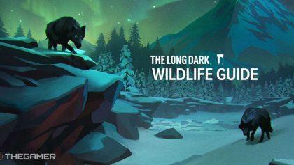 The Long Dark: Sử dụng các hướng dẫn trong nghiên cứu Sách